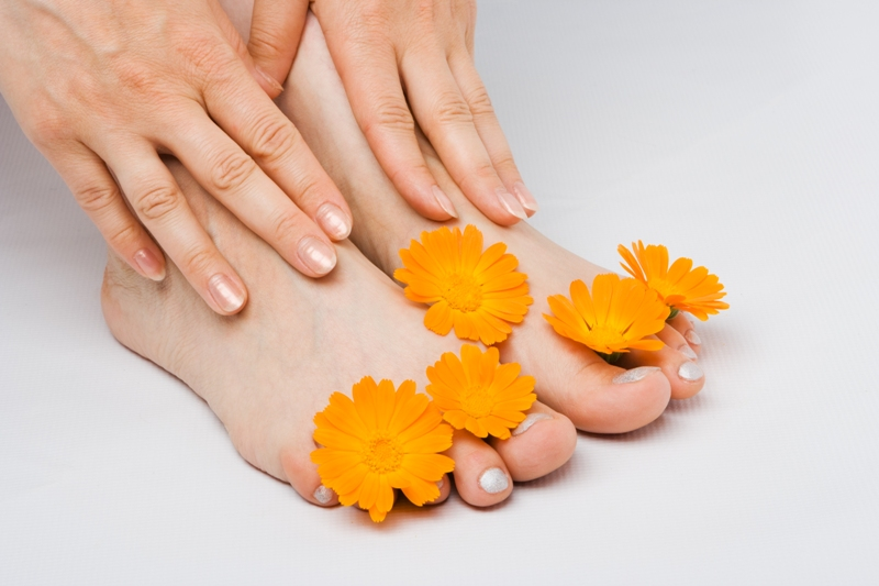 woman feet and flower on white